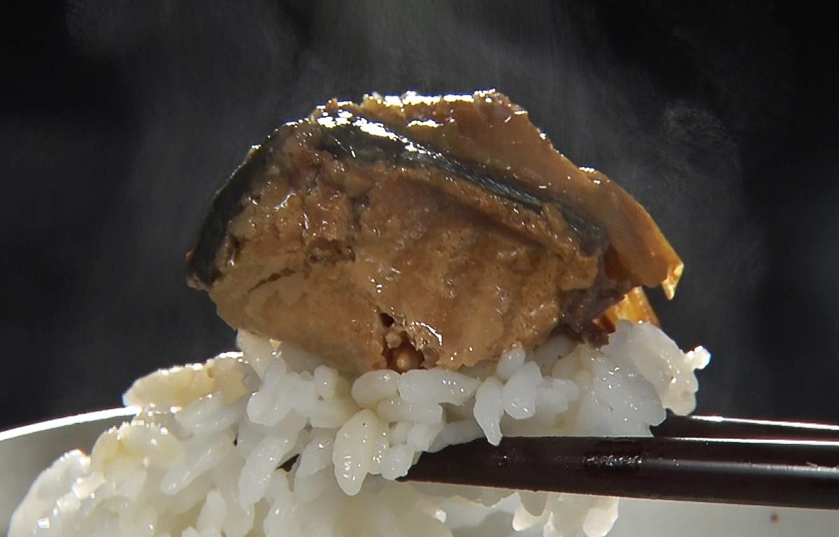 茨城県産ねぎ鯖サバ缶ご飯の共味噌塩醤油味