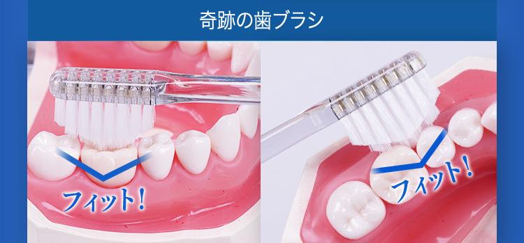 奇跡の歯ブラシ フィット!フィット!
